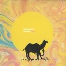 Migratory Sounds/SHO