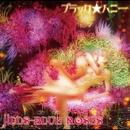 ブラック☆ハニー/JILLS BLUE ROSES