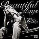 Beautiful days/D-FRIS
