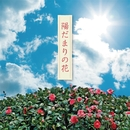陽だまりの花/山田聡子