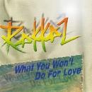 What You Won't Do For Love/Rakkaz