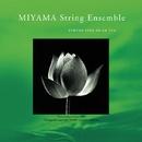 MIYAMA String Ensemble/MIYAMA String Ensemble