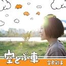 空とぶ車/宮良彩子