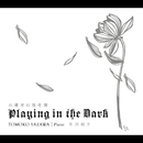 仏蘭西幻想奇譚 Playing in the Dark/矢沢朋子