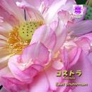 Sound of KYOTO~すきま~/コストラ/イースト・スノーマン