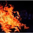 焔ノ鳥~「火」/下山武徳