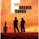 Forever Song/Vlidge