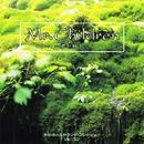 Mr.Children-君が好き-/オルゴール サウンド コレクション