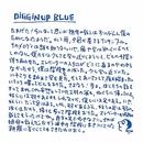 DiGGiN' UP BLUE/5A×2S