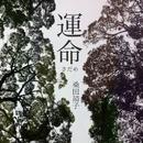 運命(さだめ)/桑田靖子