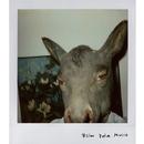 Pola Music/Flim