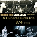 UNDER THE WILLOW session 12/ 3/4(yon-san)/A Hundred Birds trio