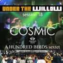UNDER THE WILLOW session 18/ cosmic/A Hundred Birds sextet