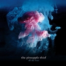 All The Wars (Deluxe Edition)/The Pineapple Thief