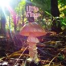 LAST/Little Wings