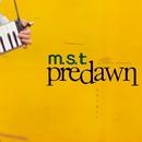 Predawn~景色と連なり~/m.s.t
