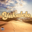 Yakalelo/2-PM feat. Mr. Z