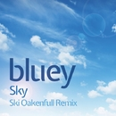 Sky - EP/BLUEY