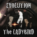EVOLUTION/The LADYBIRD