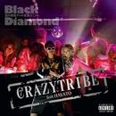 CRAZY TRIBE feat.HAYATO / PERSONA/black diamond