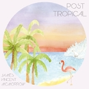 POST TROPICAL/JAMES VINCENT McMORROW