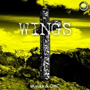 WINGS (Original Mix)/tAisuke&OHC