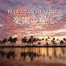楽園の癒し~HAWAIIAN HEALING~/神山純一