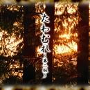 たわむれ-第二版-/美流沙女