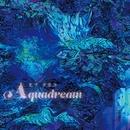 AQUADREAM/ヒナタカコ