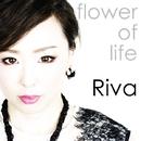Flower of Life/Riva
