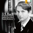 J.S.バッハ:組曲第1番ー第3番<無伴奏チェロ組曲 ファゴット版> オンジェイ・ロスコヴェッツ(ファゴット)/オンジェイ・ロスコヴェッツ