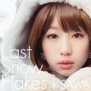 LastSnowFlakes/SAWA