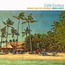 カフェ・エキゾチカ(Specially Selected Latin Music)/Various Artists
