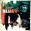 Life Between The Notes/BLUEY