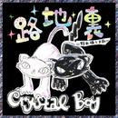 路地裏~野良猫とお前~/Crystal Boy