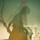 逆エントロピー/amenoto