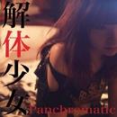 解体少女/Panchromatic