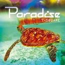 PARADISE/THE SQUARE