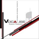 Theremin : VOCALISE/Masami Takeuchi