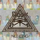 Diggin' It Up/NILE LONG