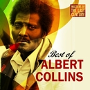 Masters Of The Last Century: Best of Albert Collins/Albert Collins