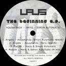 Beginning E.P./Haris Custovic & Simon Automatic & Aquamanda