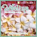 Welina NO NA KAU A KAU/ハワイアン・ジュエリー