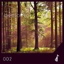 Forest/Cameron Fox