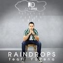 Raindrops (Array)/John Dyke