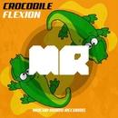 Crocodile/Flexion
