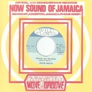 Rescue Jah Children / Instrumental Dub Version/Junior Murvin