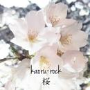 桜 feat.Lily/kaoru-rock