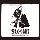 Devastation In The Void/SLANG