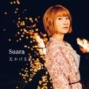 天かける星/Suara
